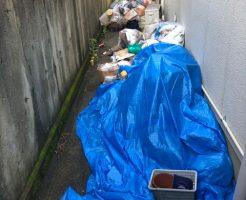 ごみの回収、清掃のご依頼☆ごみで埋め尽くされていた通路もスッキリと片付きました。
