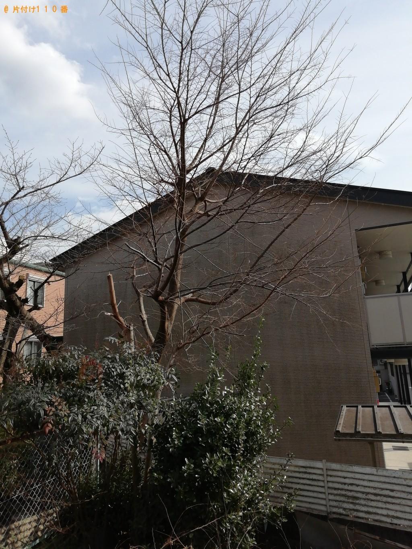 【京都市伏見区】庭木の伐採、シングルベッド、座椅子の回収・処分